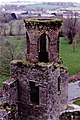 Blarney Castle Grounds - Tower adjacent to castle - geograph.org.uk - 1495445.jpg