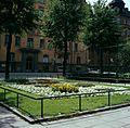 Blomstergrupp alyssum framför Ahlströmska skolan, Stockholm, SSM.jpg