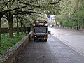 Blossom collector, Grange Road - geograph.org.uk - 1254696.jpg