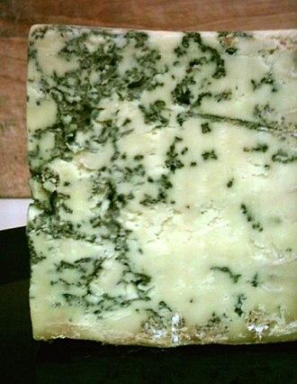 Penicillium roqueforti - Blue Stilton cheese, showing the blue-green mold veins produced by Penicillium roqueforti