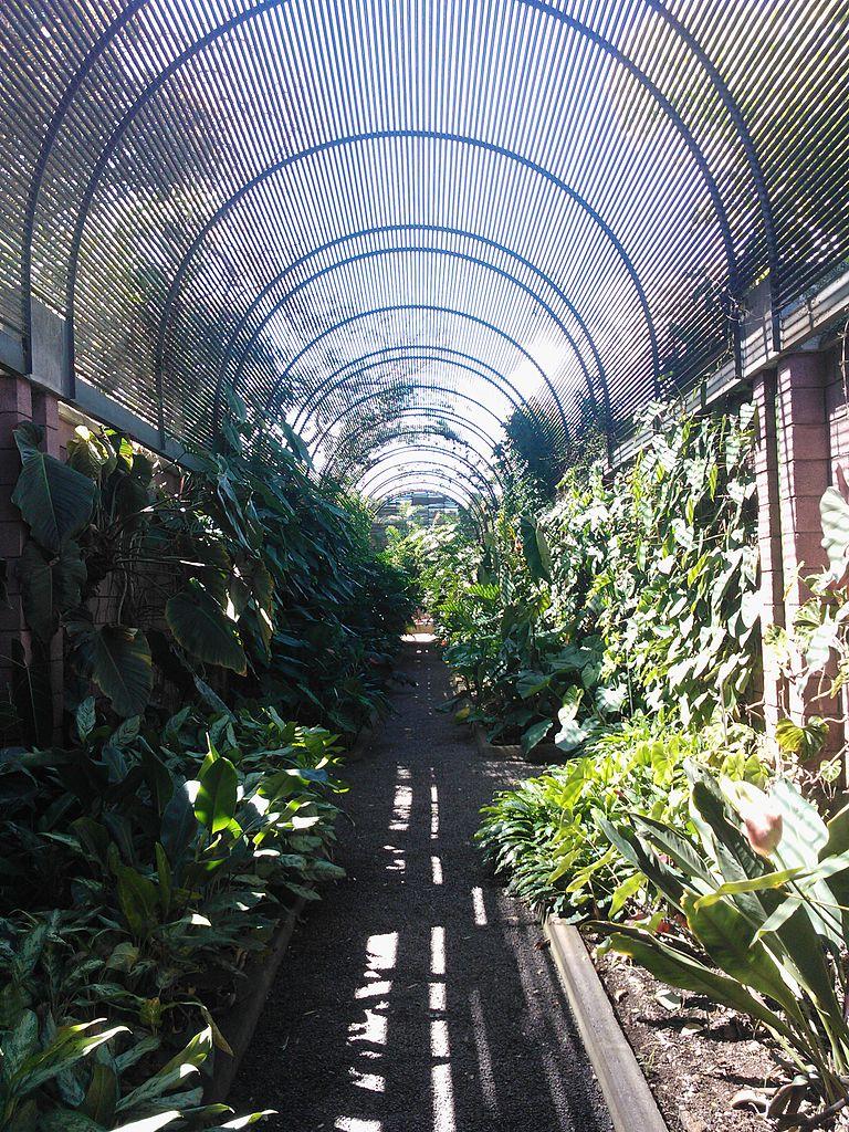 File Botanical Garden Puerto De La Cruz
