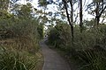 Bowral NSW 2576, Australia - panoramio (101).jpg