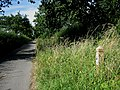 Bray's Lane with Roadside Nature Reserve - geograph.org.uk - 528246.jpg