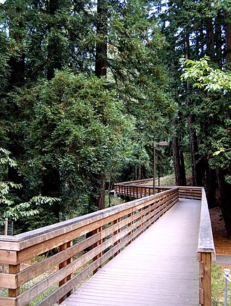 University of California, Santa Cruz - Bridge across ravine.