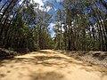 Brooman NSW 2538, Australia - panoramio (108).jpg