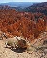 Bryce Canyon Inspiration (15).JPG
