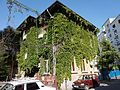 Bucharest - foliage on building.jpg