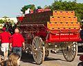 Budweiser's Clydesdales visit North Charleston (17370688515).jpg