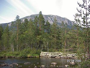 Flå - Image: Bukollen