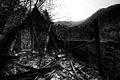 Burnt down house (6811031845).jpg