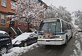 Buses in the snow (12306238435).jpg