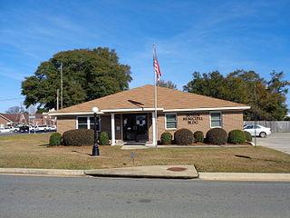 Butler, Georgia City in Georgia, United States