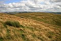 Butt Hill from Shiel Rig - geograph.org.uk - 1455402.jpg