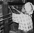 COLLECTIE TROPENMUSEUM Een Yoruba vrouw bezig met het opspannen van de schering TMnr 20016938.jpg