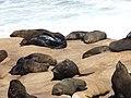Cabo Polônio Férias.jpg
