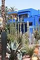 Cactus du Jardin Majorelle.jpg