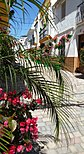 Calle cruz looking up - Estepona Garden of the Costa del Sol.jpg