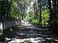 Calle galeana - panoramio (3).jpg
