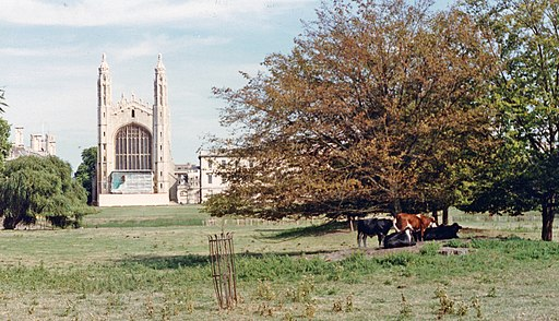 Cambridge King's College Chapel geograph-4091247-by-Ben-Brooksbank