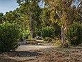 Campsite at Temple Bar (fdc7058c-087b-4d71-972f-5e9f4fcdb2fe).jpg