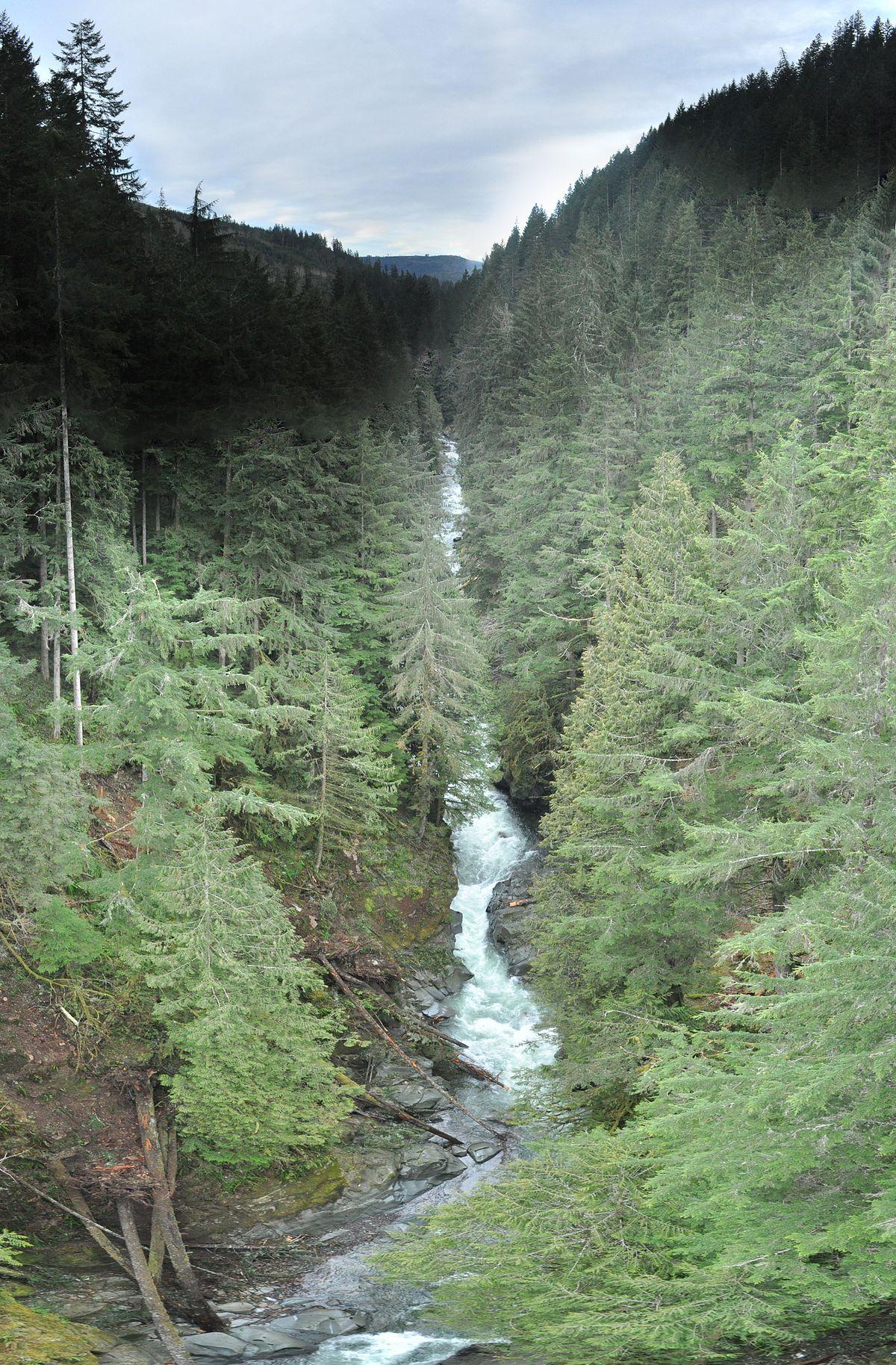 Carbon River - Wikipedia