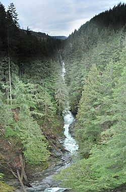 Carbon River - Wikipedia