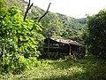 Casa de palo, madera y calamina 4 - panoramio.jpg