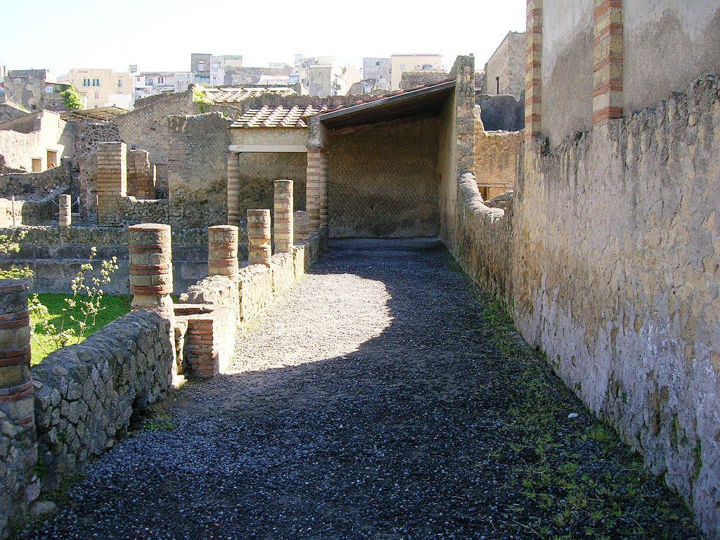 ポンペイ、ヘルクラネウム及びトッレ・アンヌンツィアータの遺跡地域の画像 p1_7