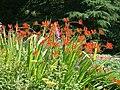 Castle Park Gardens, Frodsham - geograph.org.uk - 206375.jpg