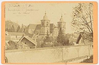 Photographie des paratonnerres de la cathédrale de Saint-Dié