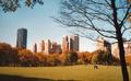 Central Park, November 2001.png