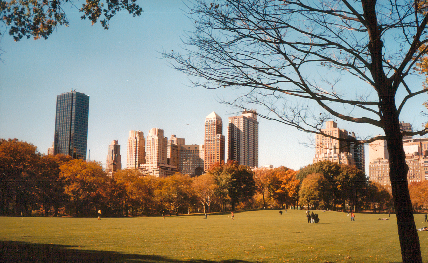 Central Park, November 2001