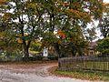 Centrum wsi Młyńsk.jpg