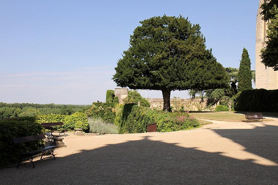 Château de Montreuil-Bellay (Classé)