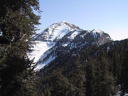 Mount Charleston Charleston peak.JPG