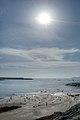 Chiavari (GE) Italia - 7 Settembre 2013 - panoramio (1).jpg