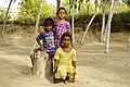 Children of Punjab.jpg