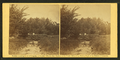 Children standing on a log bridge over a ditch, by Gardner, Alexander, 1821-1882.png