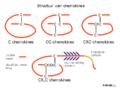 ChtxChemokineStruct Dutchtxt.png