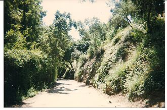 Benedict Canyon, Los Angeles - Cielo Drive in Benedict Canyon