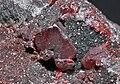 Cinabre et billes de mercure natif (Espagne).JPG