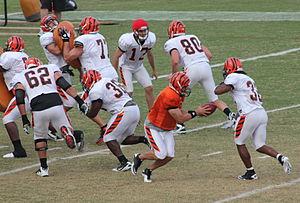 2011 Cincinnati Bengals season - Andy Dalton during training camp