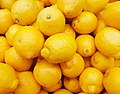 Citrus limon (Rutaceae).jpg