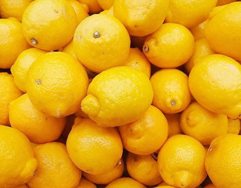 File:Citrus limon (Rutaceae).jpg