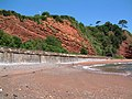 Cliffs at Coryton Cove - geograph.org.uk - 1732046.jpg