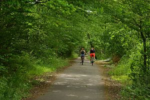 Hatfield and St Albans Railway - Cyclists on the Alban Way in May 2017