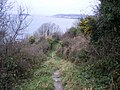 Coast path above Bodigga Cliff - geograph.org.uk - 1102069.jpg