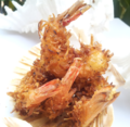 Coconut Beer Batter Shrimp.png