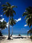 Cocos (Keeling) Islands (32244822665).jpg