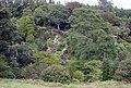 Coleton Fishacre gardens - geograph.org.uk - 66317.jpg